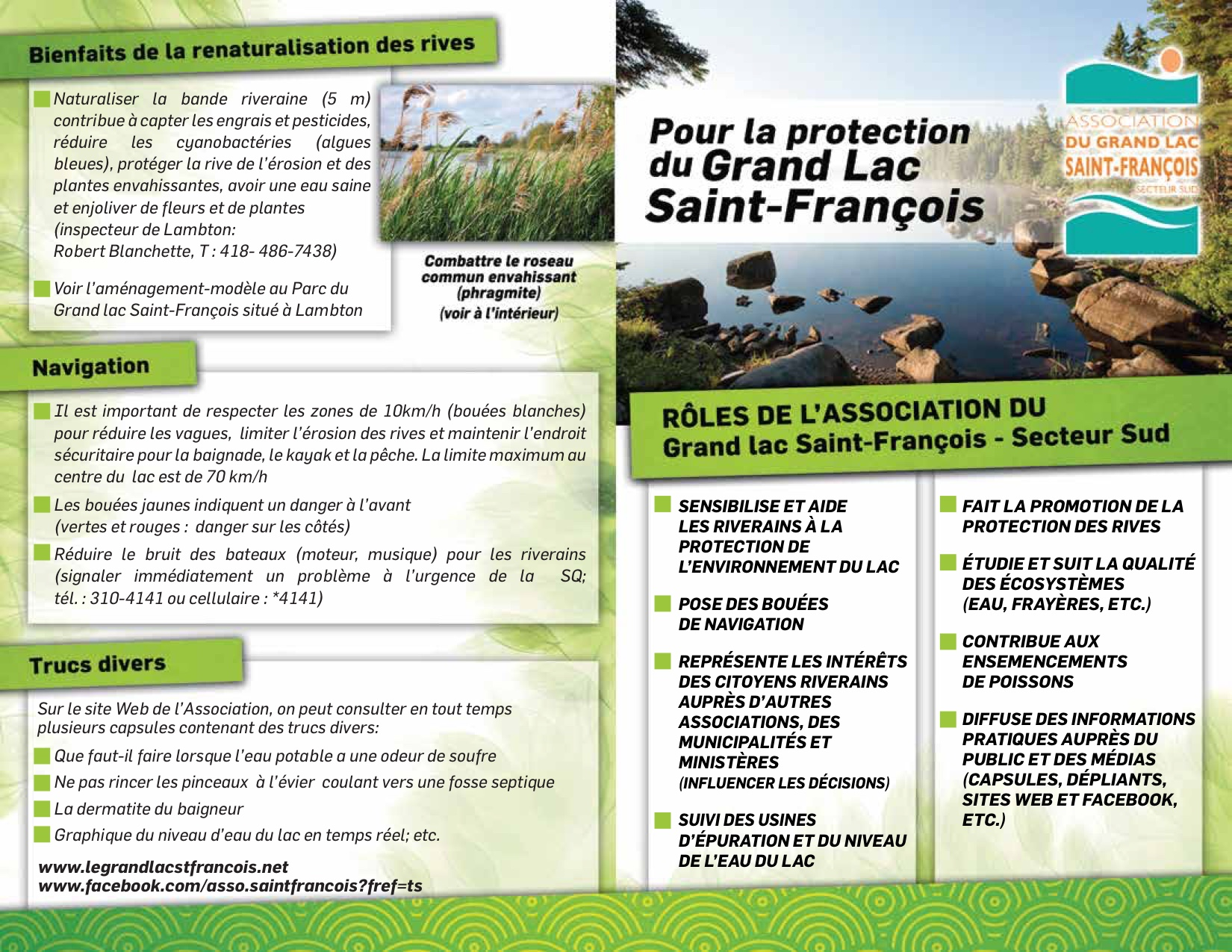 Les Plantes Envahissantes Association Du Grand Lac Saint Francois